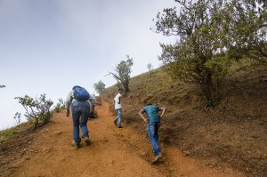 Trekking to Sarvajnapeetha and Chithramoola Cave at Kodachadri, Mookambika