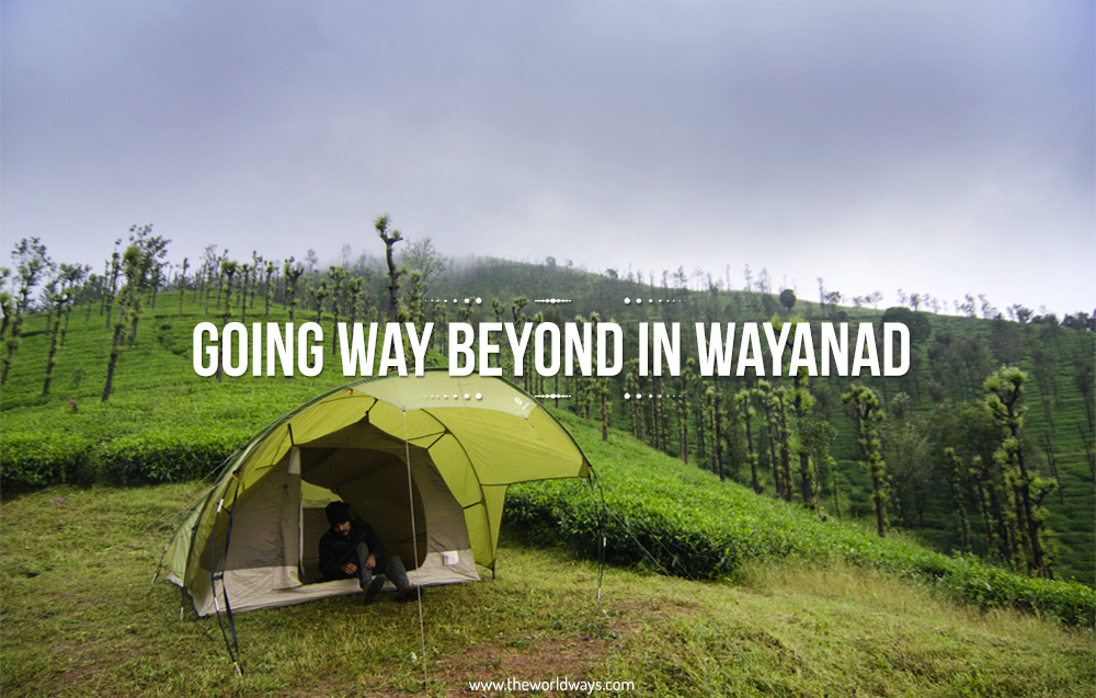 Going Way Beyond In Wayanad