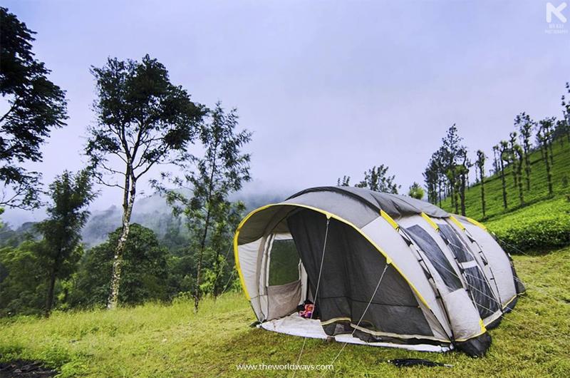 Camping at Priyadarshini Tea Environs in Wayanad