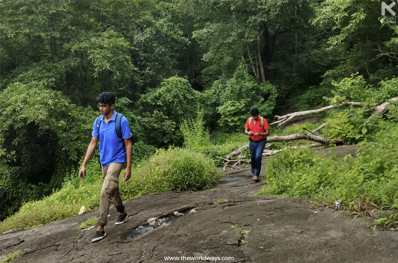 The trekking trail through the forest to Marottichal Falls