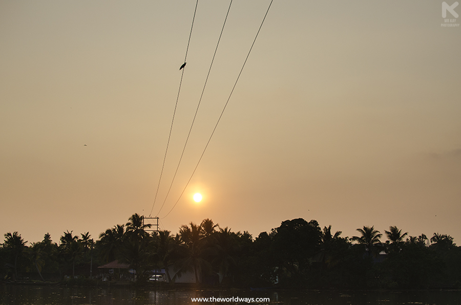 Sunset in Kakkathuruthu, the Island of Crows