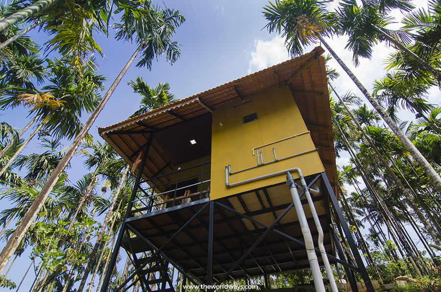 Treehouse at Ranipuram
