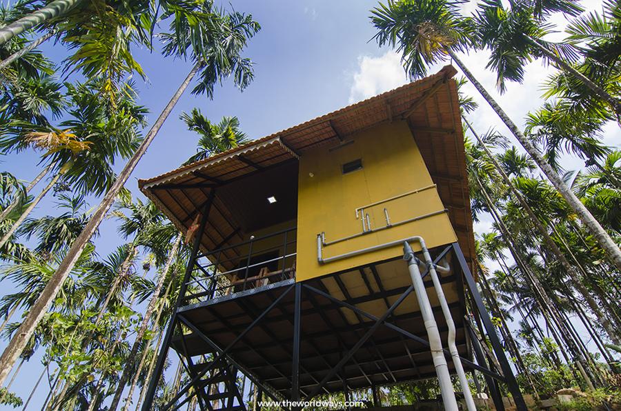 Treehouse at Ranipuram